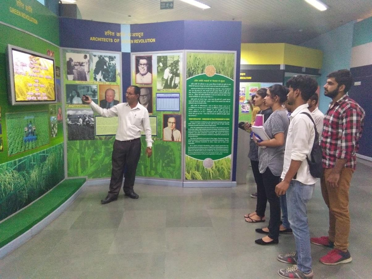 The advent of green revolution in India