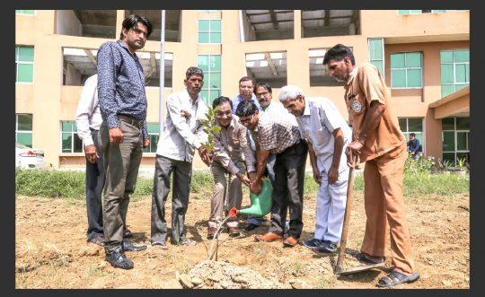 Save Environment Save Life Campaign at PDM University
