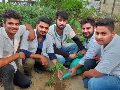 tree plantation pictures_page3_image1