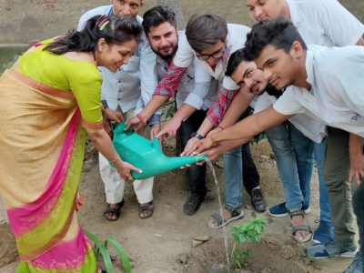 tree plantation pictures_page3_image3