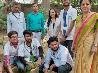 tree plantation pictures_page3_image4